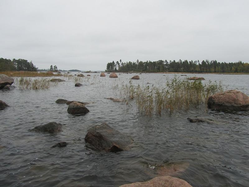 Изображение 1 : Поиски щуки в свежей воде.